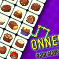 Onnect Pair Matching Puzzle